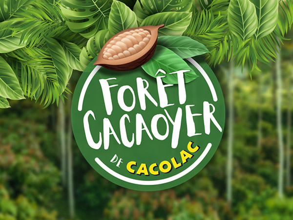 Forêt Cacaoyer